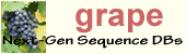 Grape logo